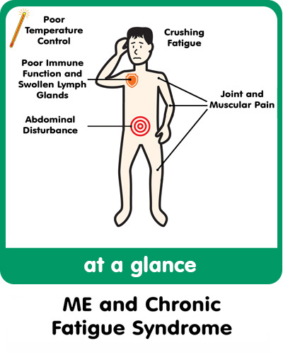 an introduction to the chronic fatigue and immune dysfunction syndrome Introduction chronic fatigue syndrome (cfs), also known as chronic fatigue  and immune dysfunction syndrome (cfids), myalgic encephalomyelitis, and.